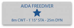 Aida 1