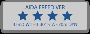 Aida 4